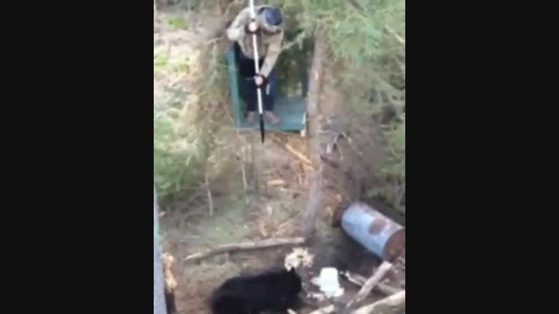Охотник на медведя