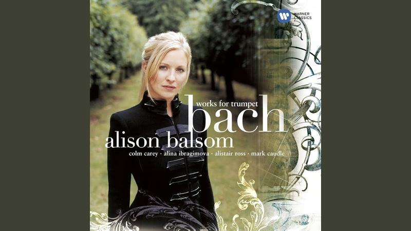 Concerto in D Major, BWV 972 (after Vivaldis Violin Concerto in D Major, RV 230) I. Allegro...