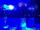 Шоу-балет Exotic Art на дне рождения салона красоты Апельсин