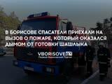 В Борисове спасатели приехали на вызов о пожаре, который оказался дымом от готовки шашлыка