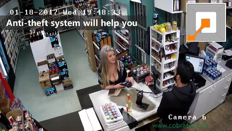 Sensormatic,loss prevention,shoplifter,shoplifting,checkpoint,retail,security
