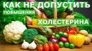 Как не допустить повышения холестерина Профилактика атеросклероза