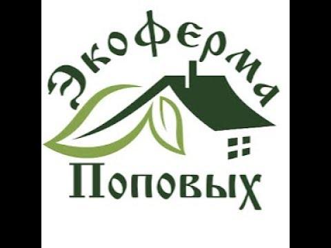 Видео привет от Виталия г.Барнаул