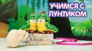 Чужой подарок 🎁 Учимся с Лунтиком 🎁 Новая серия
