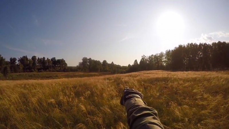 Заря Осенний прорыв 2 Новосибирск 2018