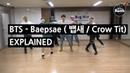 BTS BAEPSAE 뱁새 Crow Tit Explained by a Korean