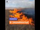 Человеческий фактор стал причиной сильных пожаров в Забайкалье — Москва 24