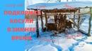 Подкормка косули в зимнее время