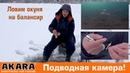 Ловля окуня на балансир зимой. Особенности подледной рыбалки на балансир. Подводные съемки.