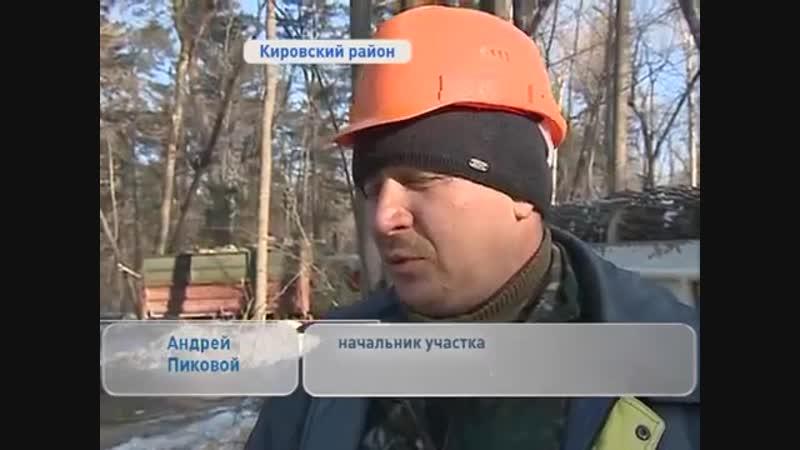 Удаленное видео В Кировском районе наживаются на поставке бесплатных дров