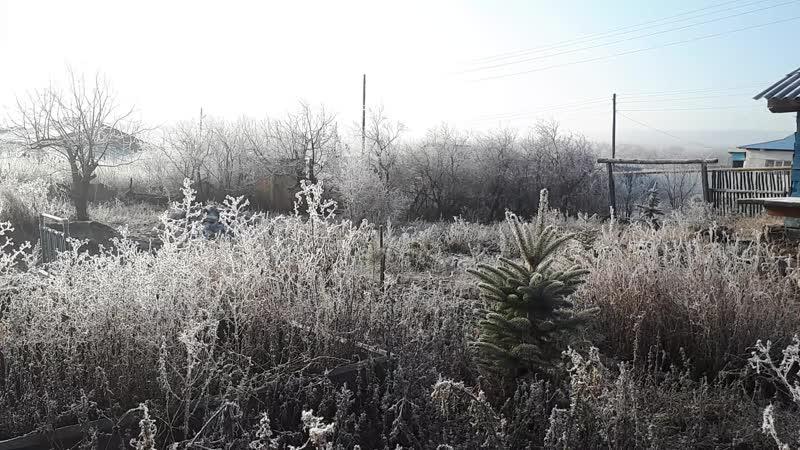 Ноябрьский мороз в Русской Селитьбе