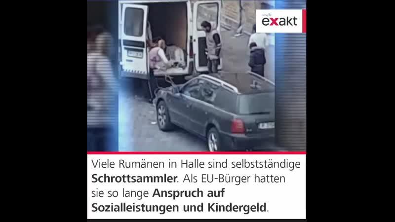 Den letzten Jahren sind hunderte Menschen aus einer rumänischen Kleinstadt nach Halle Saale gezogen Als EU