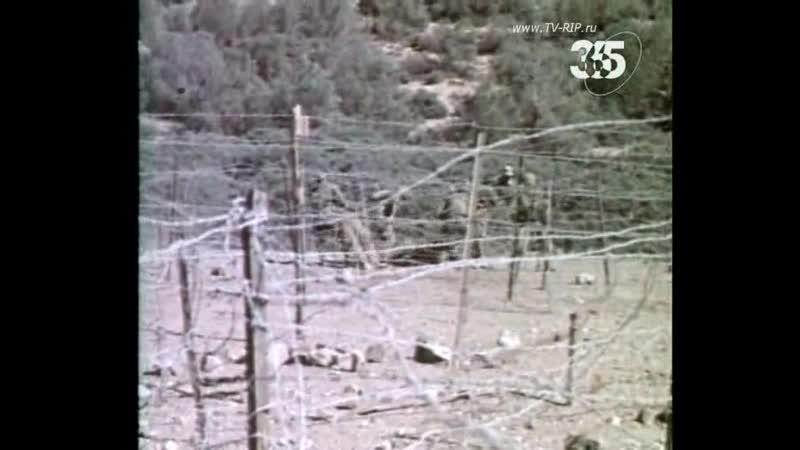 Алжирский пасьянс (Горячие точки Холодной войны)