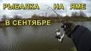 Рыбалка осенью на реке Ловля на спиннинг на ямах Щука и окунь в сентябре