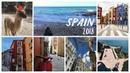 VLOG: Spain 2018. Облизал жираф и укусил страус О_о