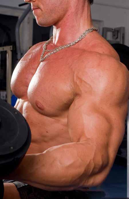 Некоторые в сообществе бодибилдинга используют Clomid для повышения уровня тестостерона.
