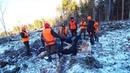 Охота 211 загонная на лося