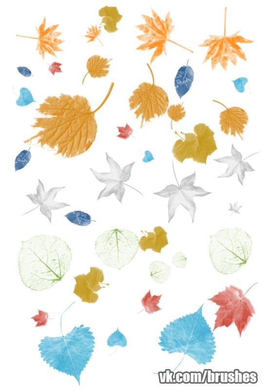 leaves.abr