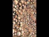 Вова Синий - На Марсе