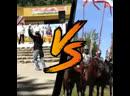 Два праздника в одном парке в городе Логойск