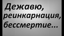 Дежавю реинкарнация бессмертие Павел Карелин