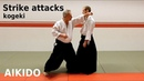 Aikido STRIKES, attacker techniques (kogeki) by Stefan Stenudd, 7 dan Aikikai shihan