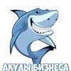 Акулы Бизнеса - Блог о заработке в интернете
