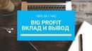 Big Profit - Вклад и вывод с проекта