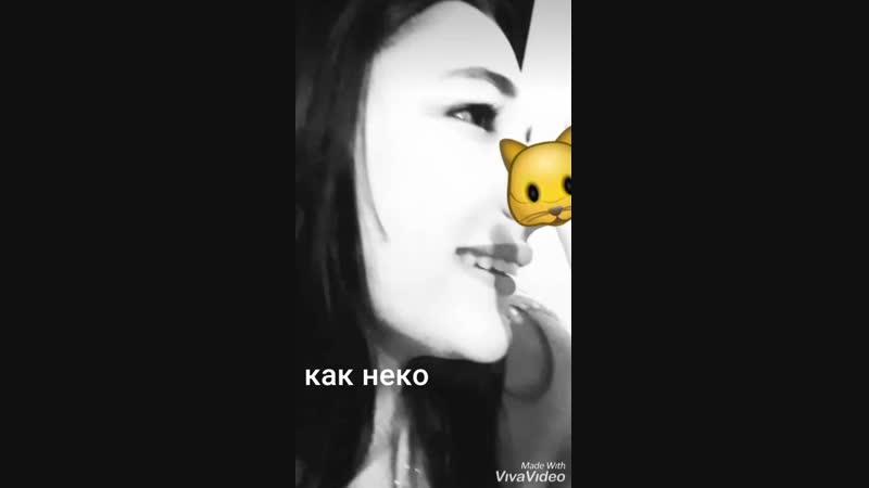 XiaoYing_Video_1544597942046.mp4