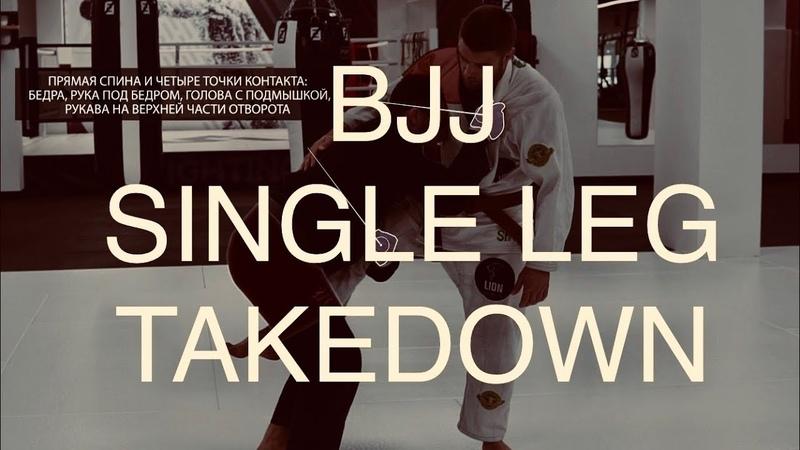 BJJ single leg takedown