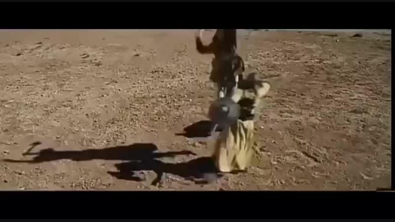Халид бин валид