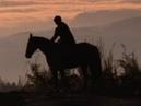 Playwiththebest - Horseback Riding