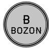 Bozon_hikka - Twitch