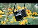 Fujifilm X-T20 / Продолжение истории...