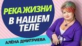 Алена Дмитриева. Река жизни в теле человека