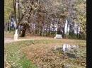 В Берново 2011год. Средь шумного бала