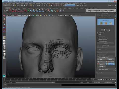 Human Face Topology For Production