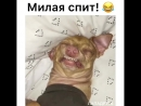 Моя красотка)