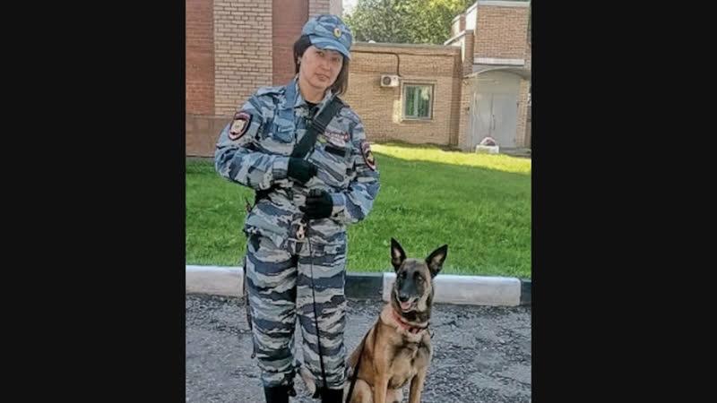 Бывший военный прокурор застрелил на глазах кинолога ее служебную собаку