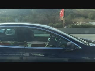 Guy passed out in Tesla while driving