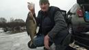 37 кг ЛЕЩА Рыбалка на леща, трое суток в палатке Polar Bird.