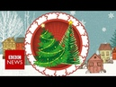 Fake or fir? Your Christmas tree's carbon footprint - BBC News