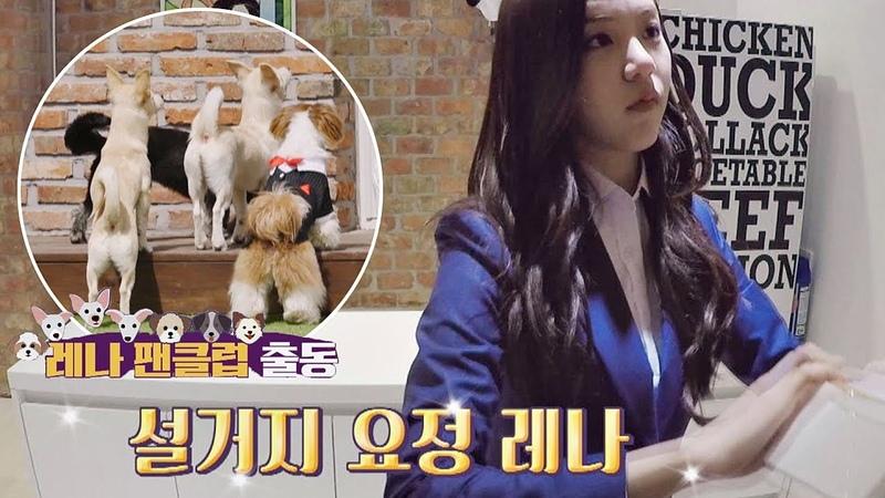 설거지 요정 레나(Le Na)를 응원하러 온 ′레나(Le Na) 팬클럽′ 출동↗ 그랜드 부다개4