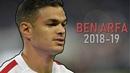Hatem Ben Arfa ● Back In Business ● Insane Goals and Skills 2018 19 HD