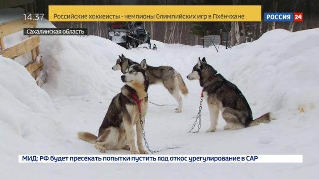 Новости на Россия 24 • Дальневосточные гектары используют для необычных бизнес-проектов