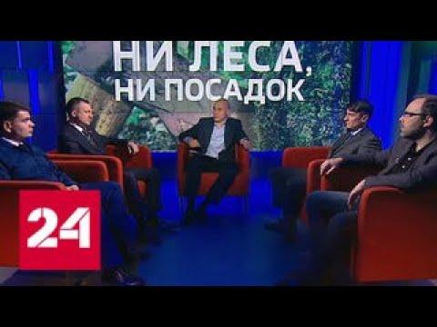 Битва за лес кто пилит российские богатства - Россия 24
