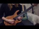 Improvising cover ACETIC LADY. - Птица