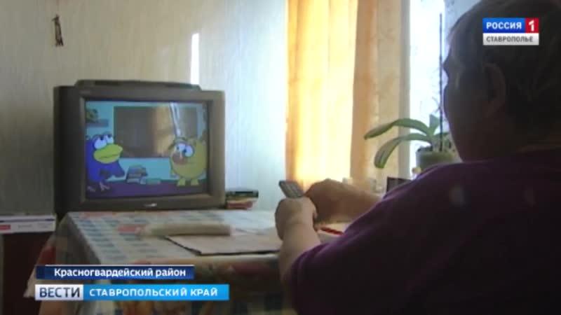 Любимые передачи в новом цвете. Автор Екатерина Попова » Freewka.com - Смотреть онлайн в хорощем качестве
