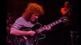 Pat Metheny Group Live In Japan 1995