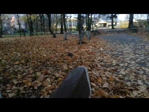 Нанесло к скамейке листьев кучу